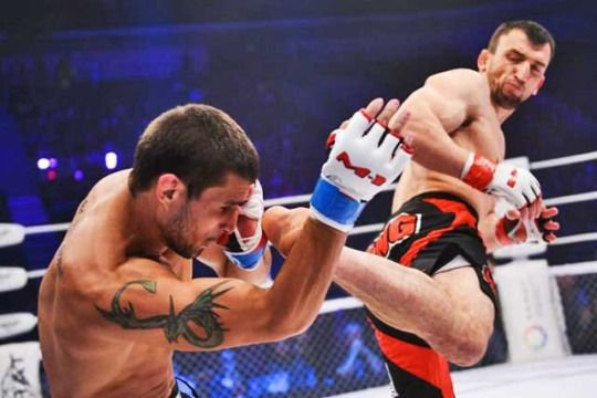 Six Reasons to watch UFC Shangai -