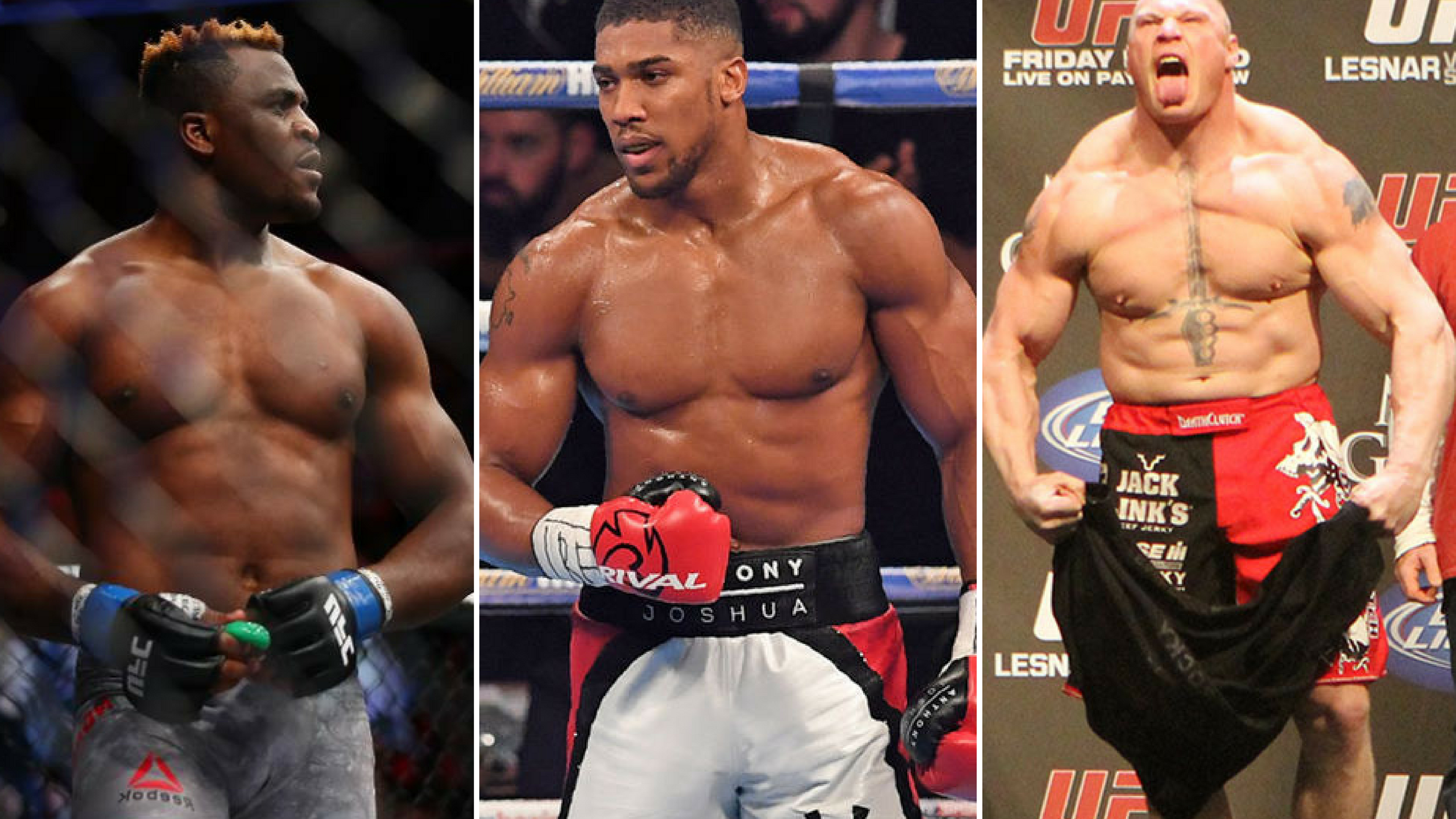 Francis Ngannou vs Brock Lesnar or Anthony Joshua or Deontay Wilder? Reality or Dream? -