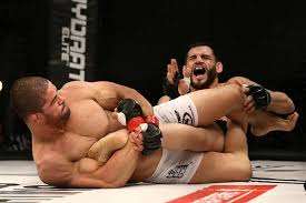 Fight Nights Global: Rousimar Palhares set to return in March - Rousimar Palhares
