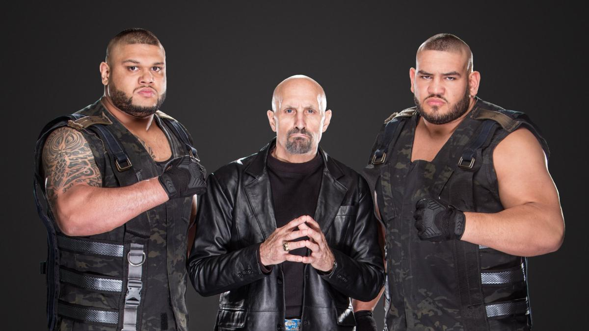 WWE: Paul Ellering denies travel issues behind his removal as AoP manager - Pain