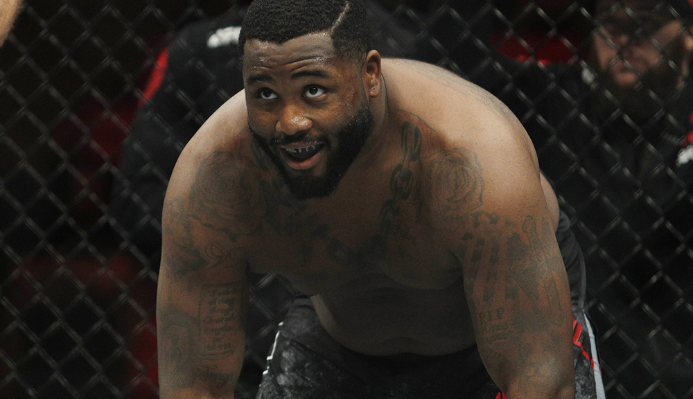 UFC Fight Night 128 Results: Heavyweight Justin Willis Takes Sherman to A Striking Class -