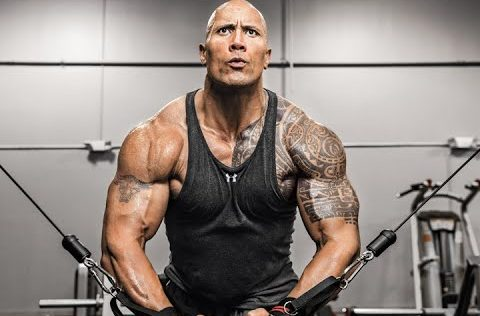 Photos: The Rock Story -