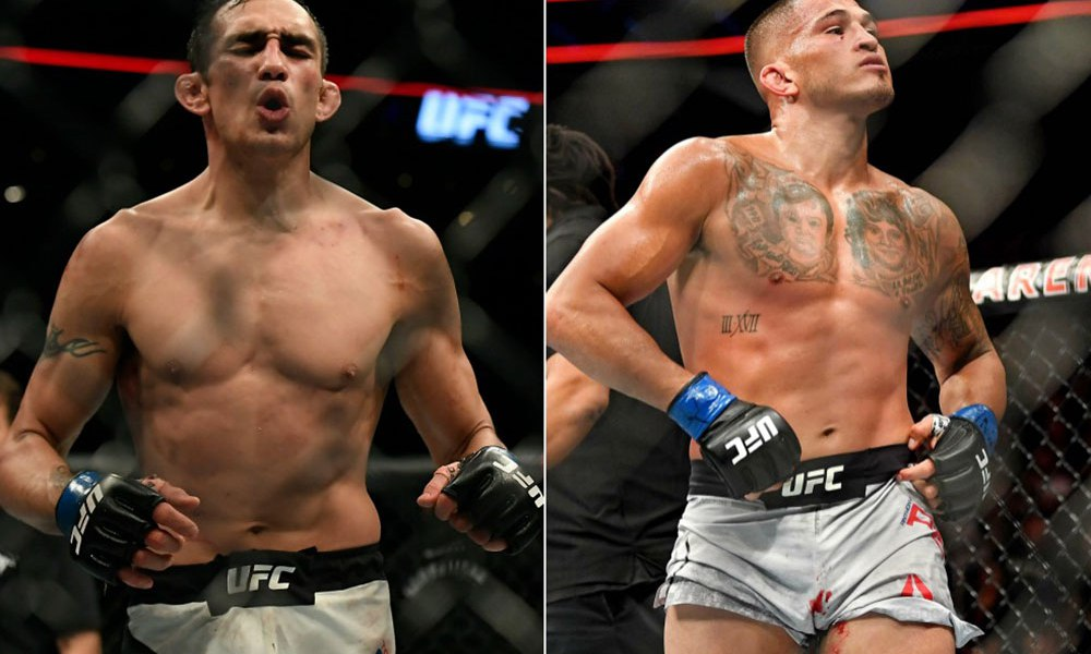 UFC: Tony Ferguson vs. Anthony Pettis is in the works for UFC 229 on Oct. 6 - Ferguson