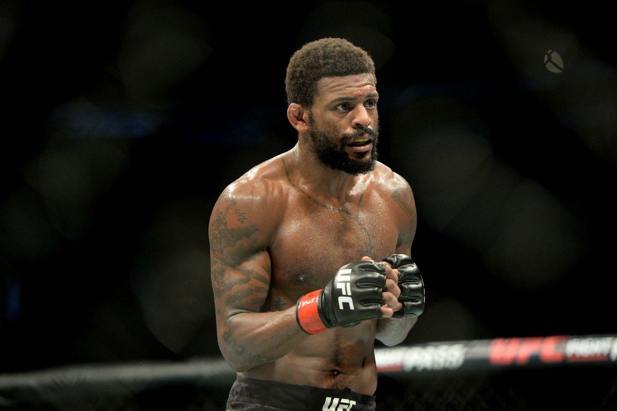 UFC Fight Night 138 Oezdemir vs. Smith Results: Michael Johnson defeated Artem Lobov via Unanimous Decision -