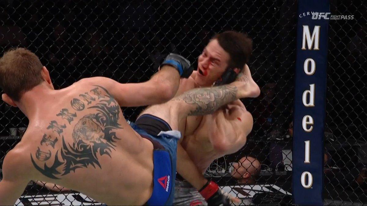 Twitter reacts to brutal beatdown of Alexander Hernandez by Cowboy Cerrone - Donald