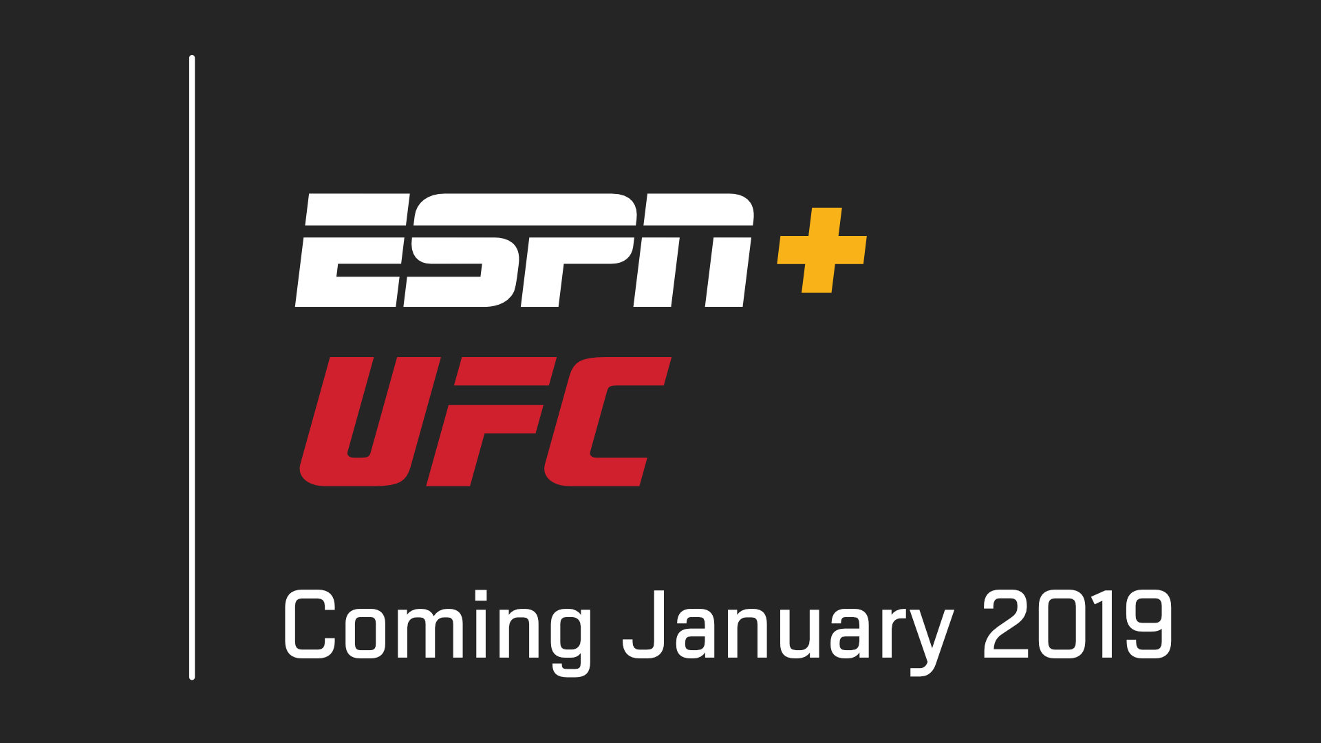 UFC's schedule up to June 2019 - Fight