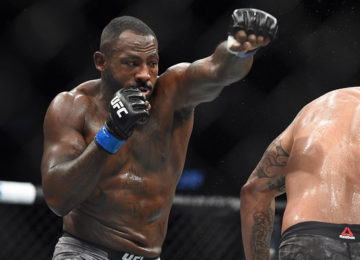 Image result for ufc 236