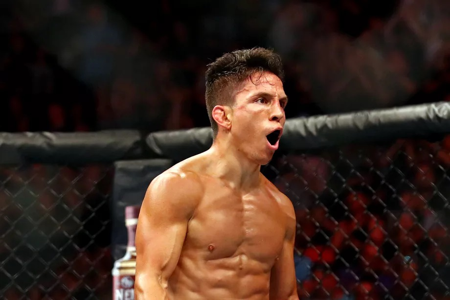 UFC on ESPN 3 Results - Joseph Benavidez Stops Jussier Formiga in Round 2, Wins The Rematch -