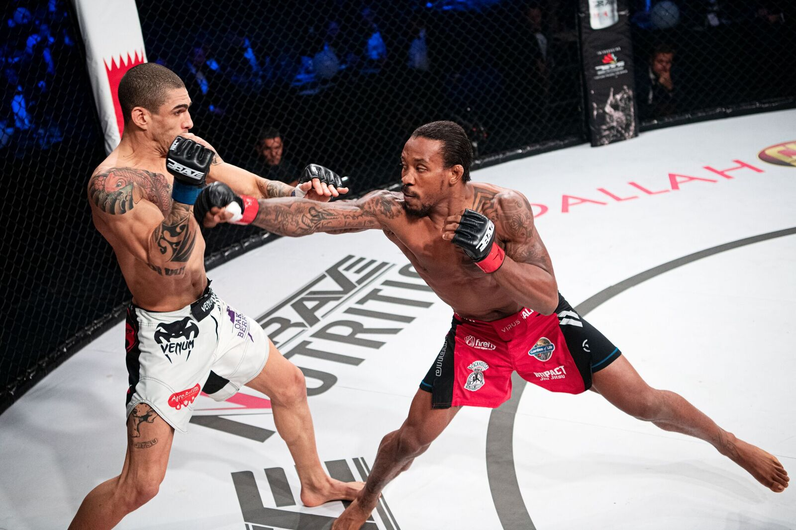 After landmark win at BRAVE 24, Jenkins ready to challenge other world champions -