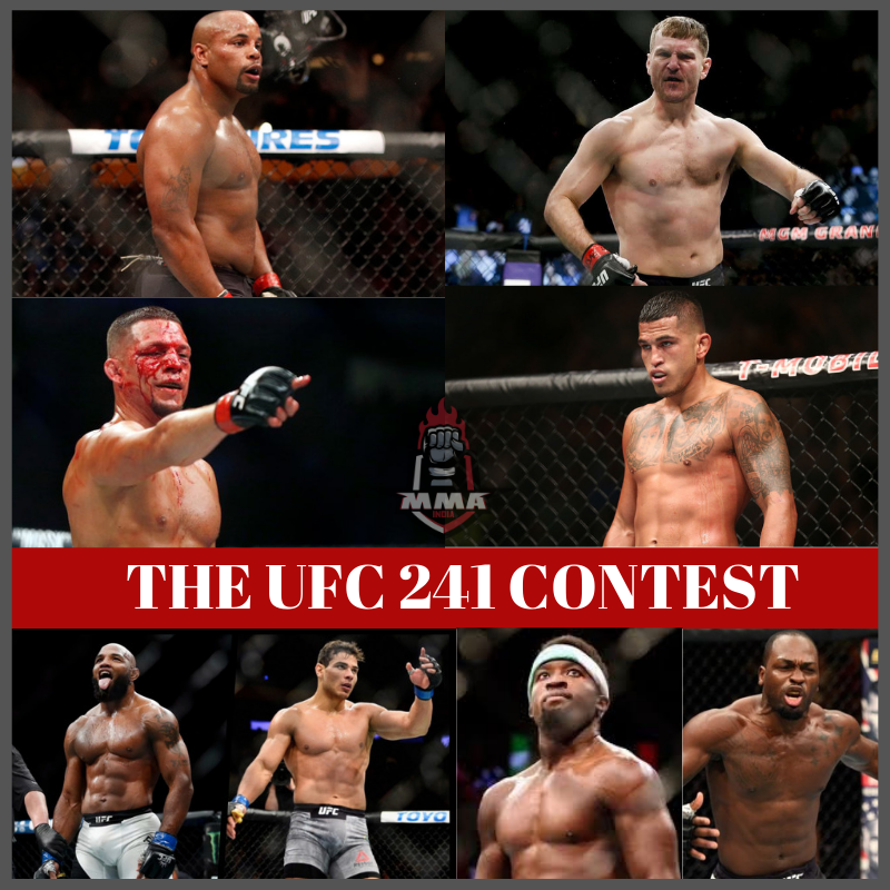THE UFC 241 CONTEST -