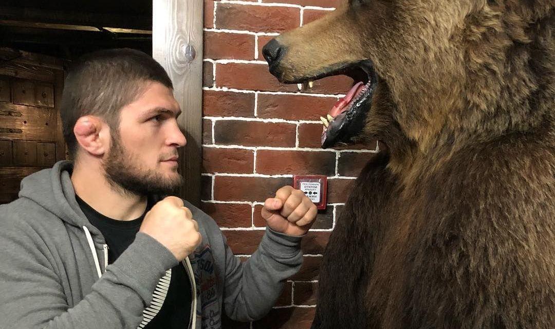 PETA target Khabib for fighting against chained bear - Khabib