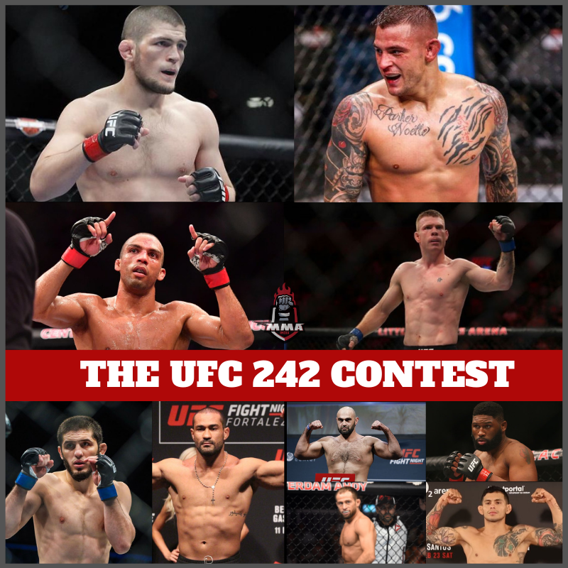 THE UFC 242 CONTEST -