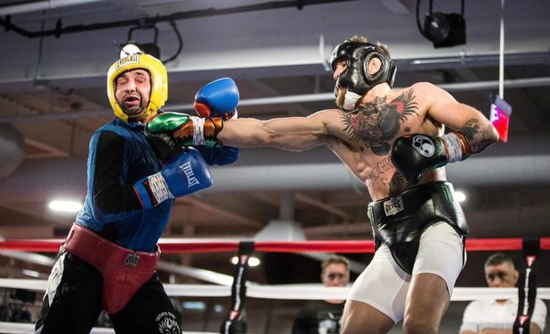Paulie Malignaggi rules out a possible boxing match with Conor McGregor - Malignaggi