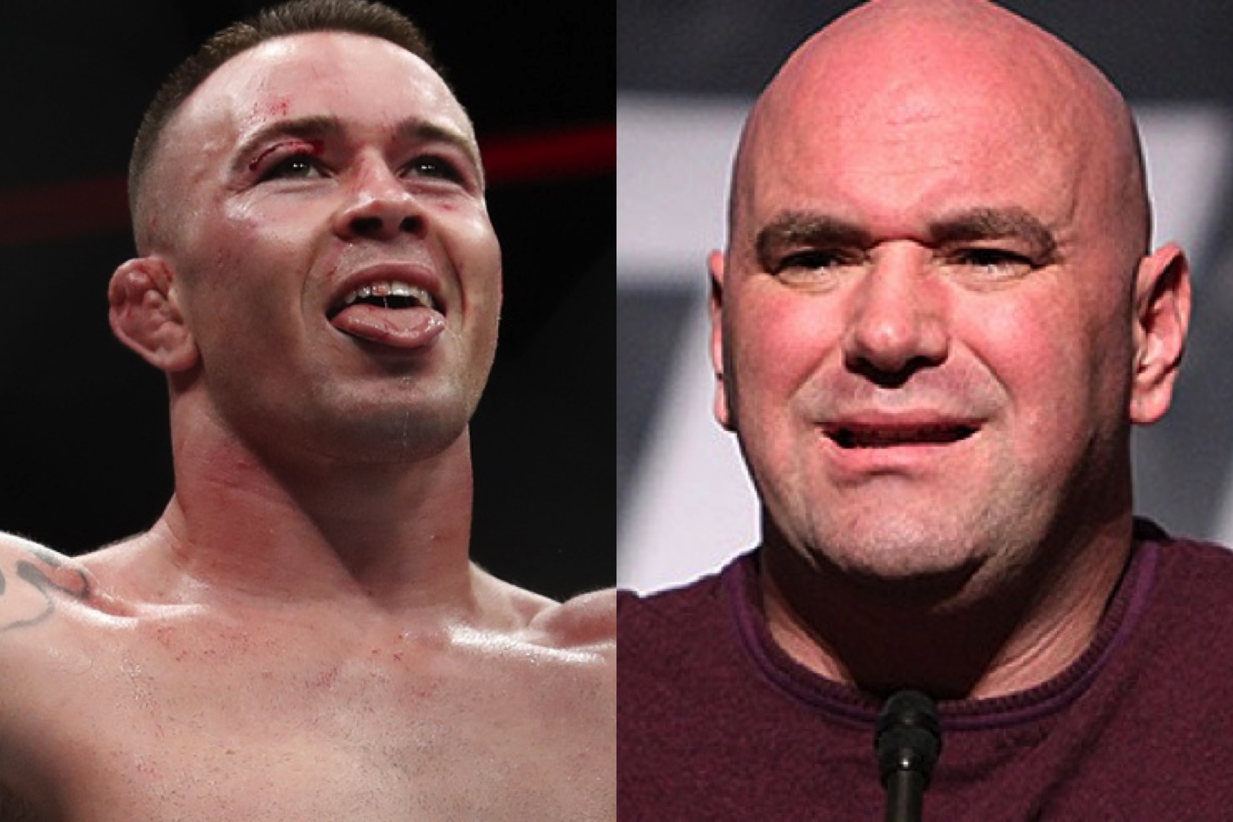 Colby Covington says he will slap Dana White in the face with UFC belt - Colby