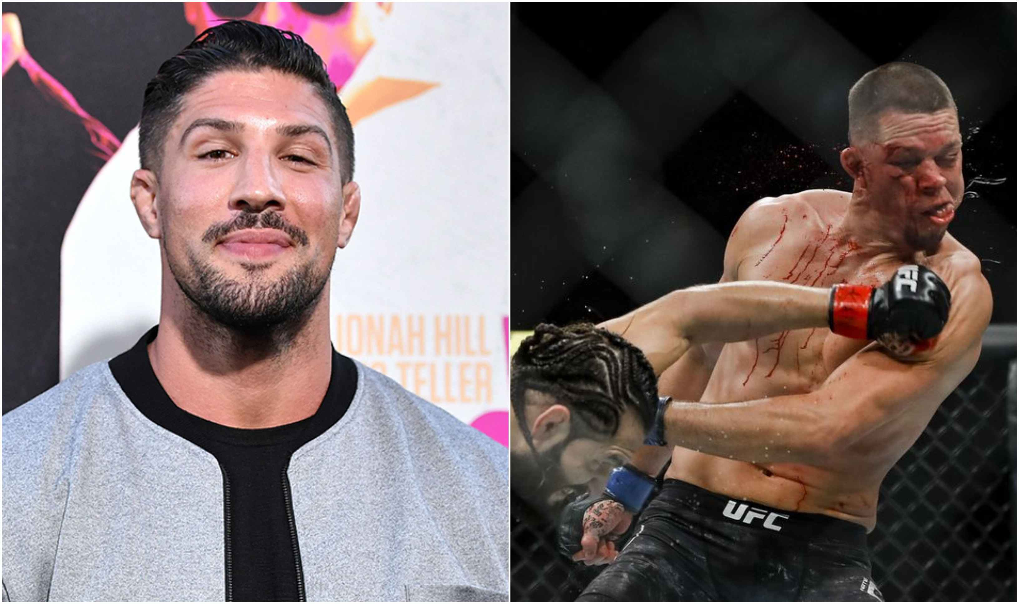 Brendan Schaub agrees with Doctor's stoppage at UFC 244 Main Event - Brendan