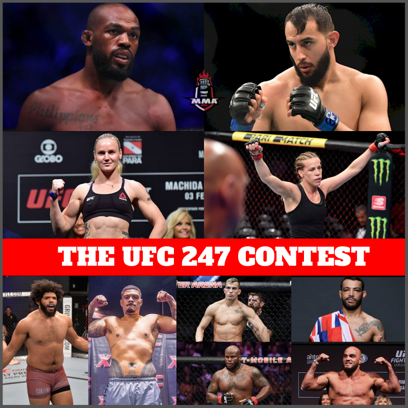 THE UFC 247 CONTEST -