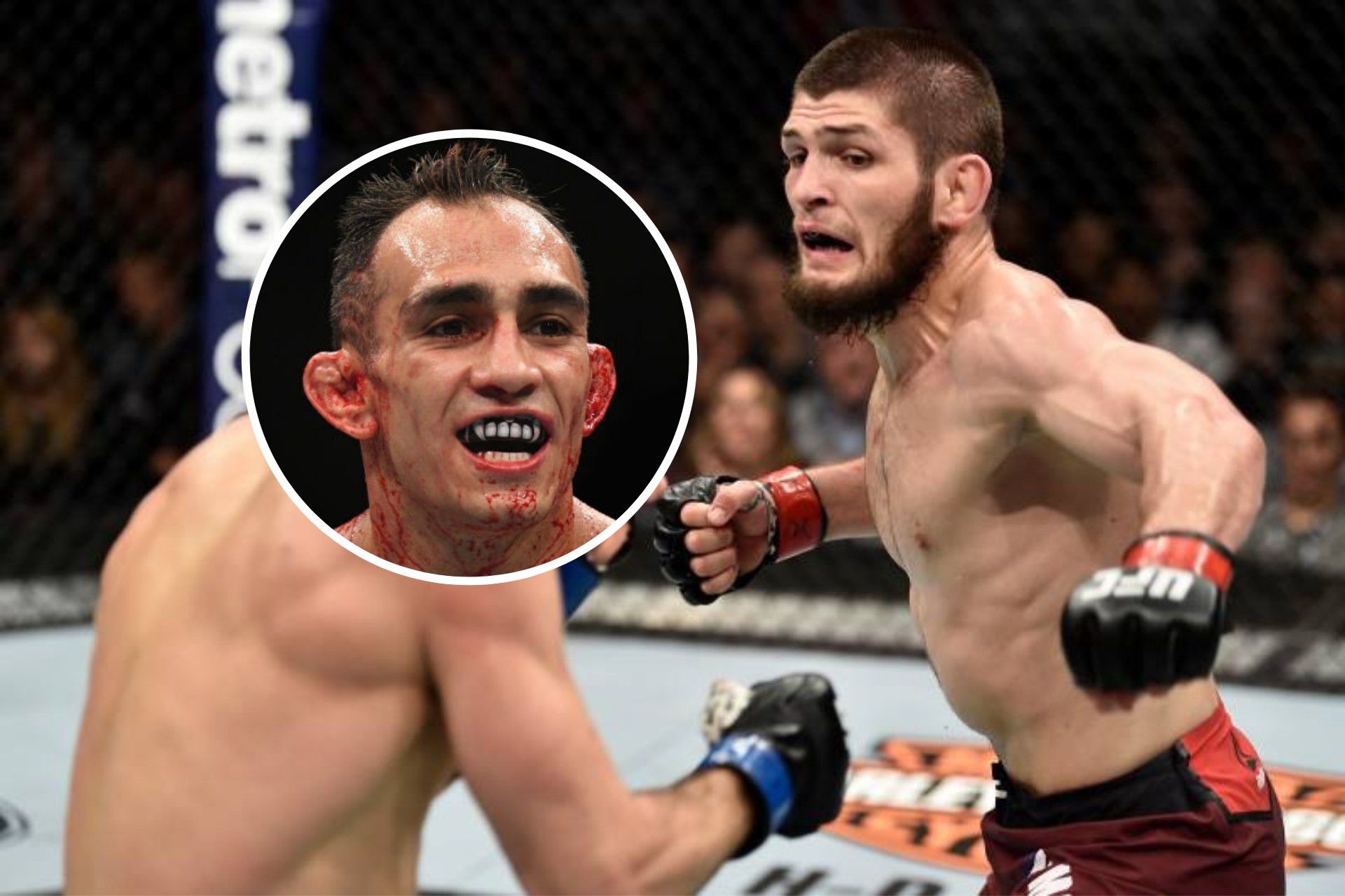 UFC News: Khabib outlines why the Tony Ferguson fight is the biggest in history - Khabib