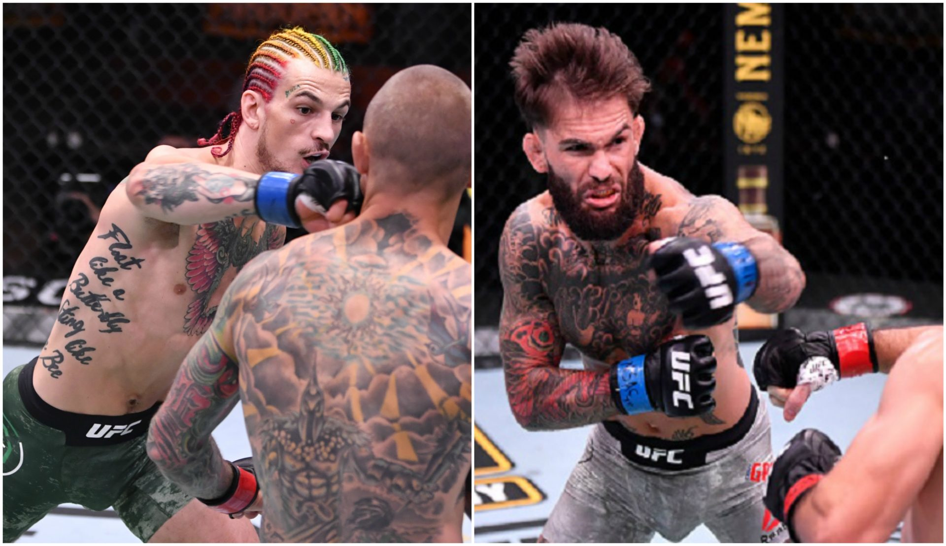 Sean O'Malley trolls Cody Garbrandt's 'barfight' KO at UFC 250 - Cody Garbrandt