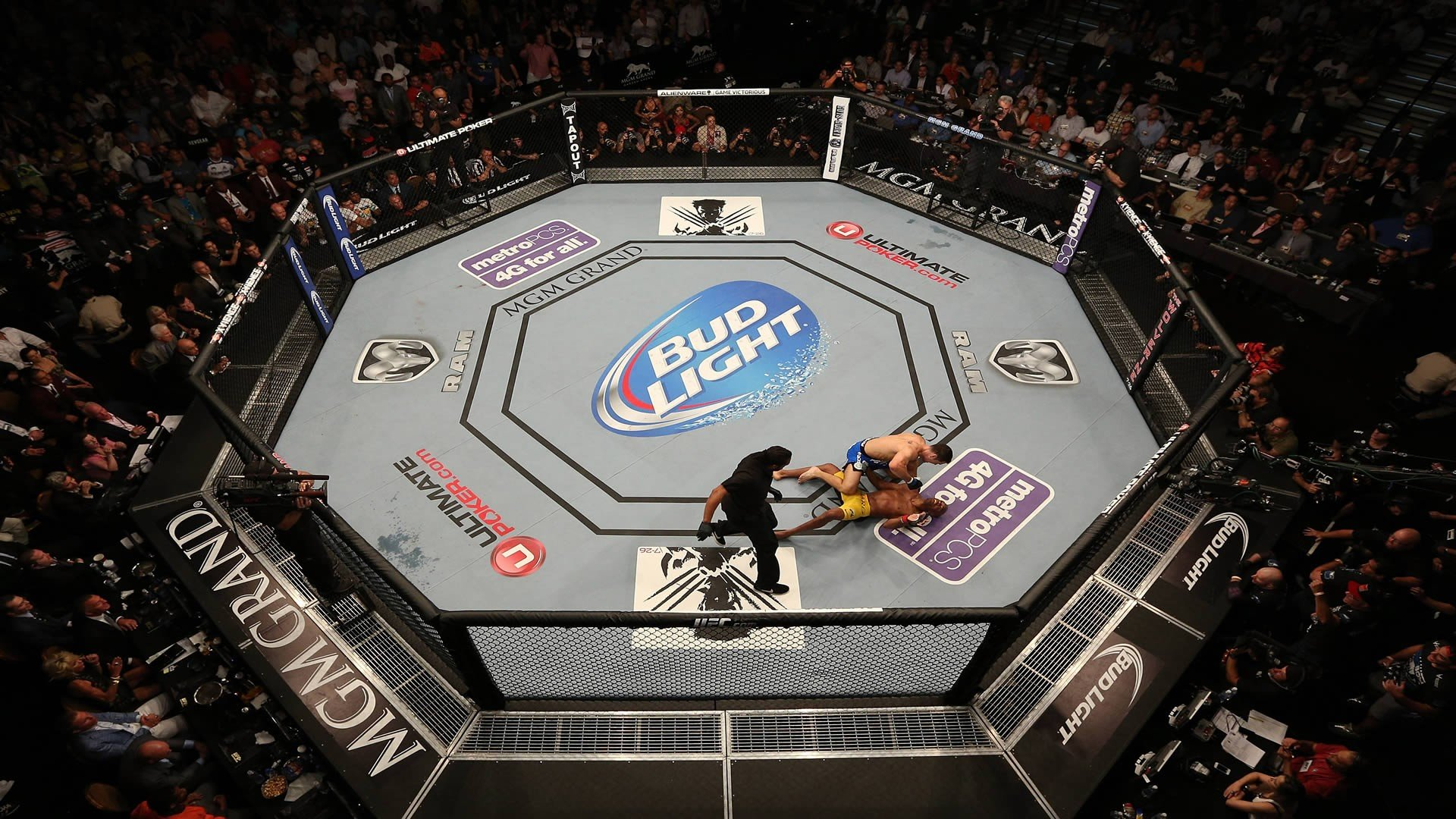Two Growing Industries Combine: MMA and Online Betting - MMA