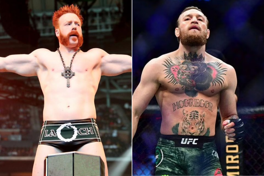 WWE star Sheamus says Conor McGregor will move to pro wrestling - Mcgregor