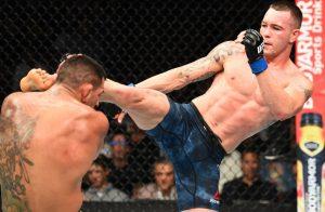 UFC welterweight