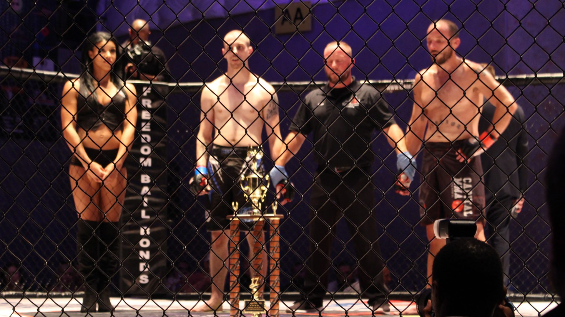 Get to Grips with MMA Betting Odds to Optimise Winnings - Odds